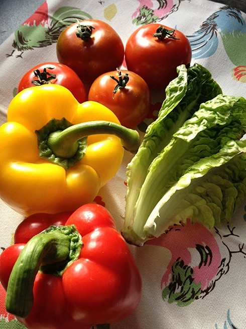 Fajita vegetables pepper lettuce tomatoes