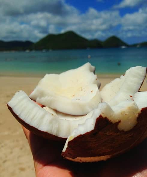 Coconut St Lucia