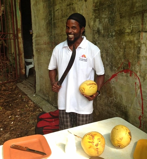 St Lucia fruits coconuts