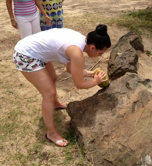 Yum Dim Sum five dollar beach coconut