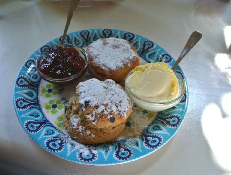 Court Gardens Holt tea room scones