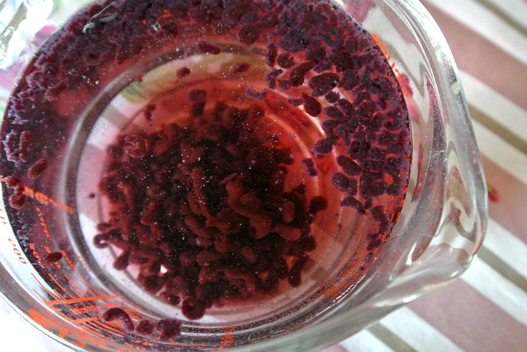 Mollecular Gastronomy kit review caviar blackberry