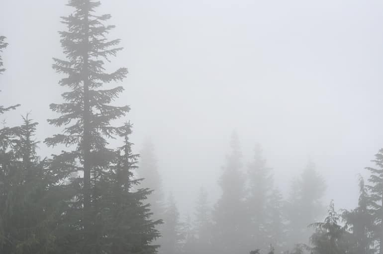 grouse-grind-vancouver-mist